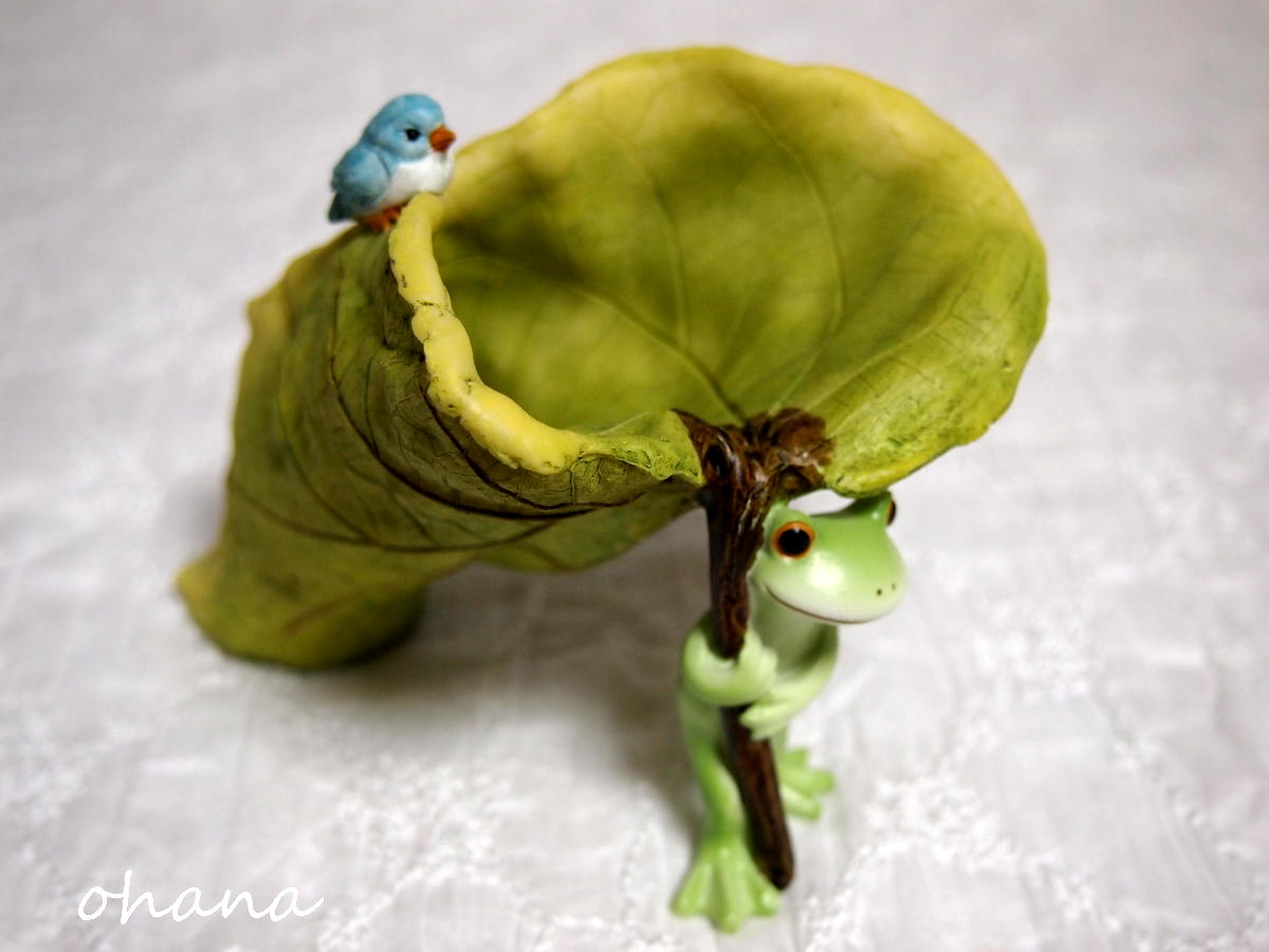 カエルと葉っぱ