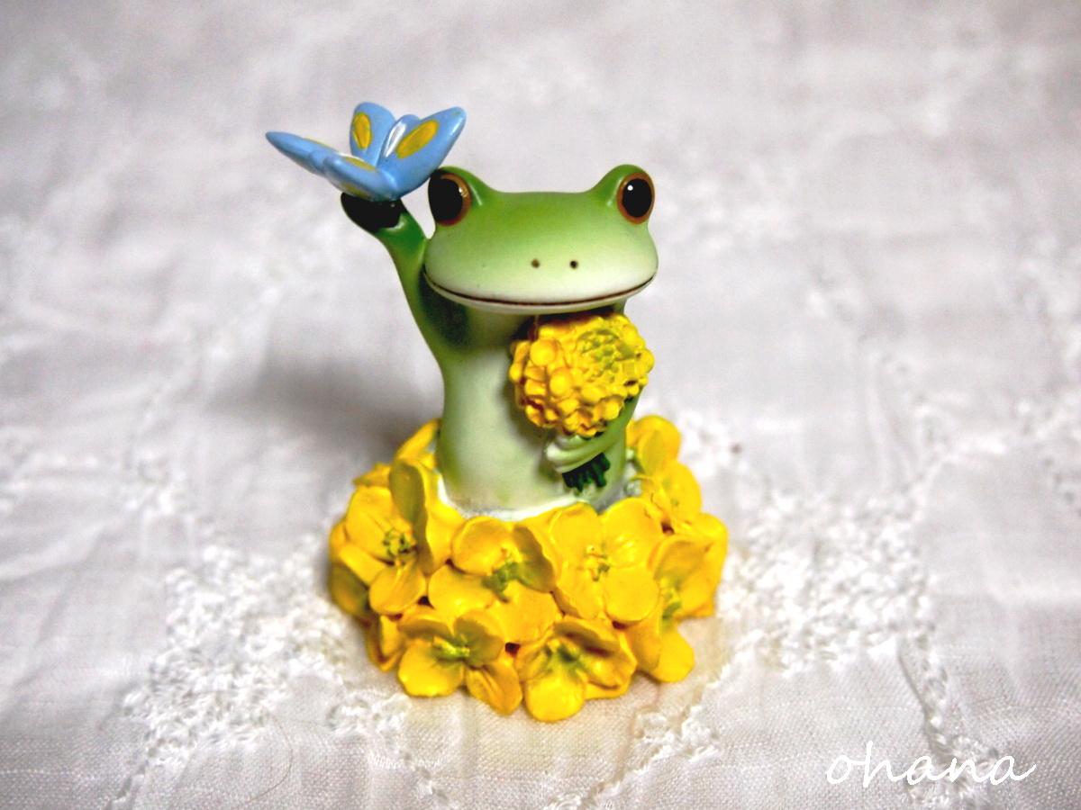 菜の花とカエル