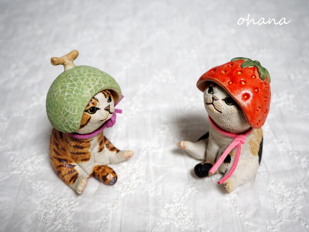 フルーツレンジャー猫