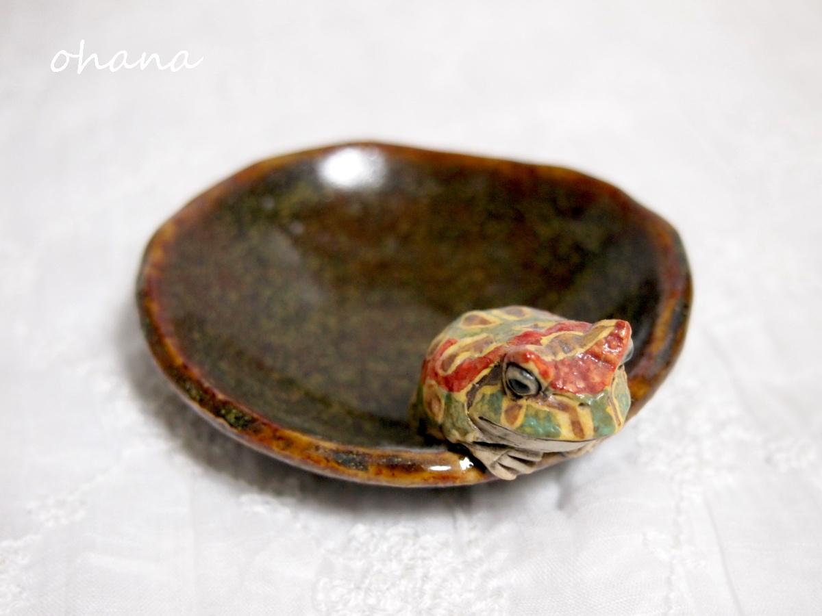 ベルツノガエルの豆皿
